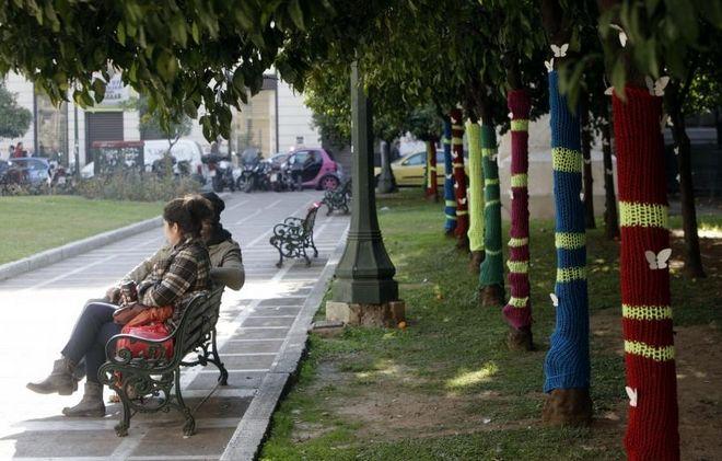 Οι άστεγοι κρυώνουν, τα δέντρα «ντύνονται»! | Panathinaikos24.gr
