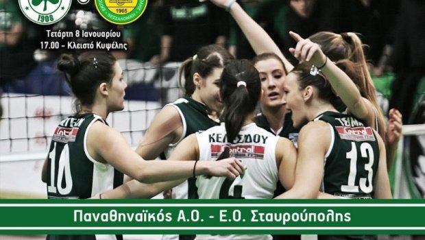 Με την Ανθή για νέο «πάρτι» | Panathinaikos24.gr