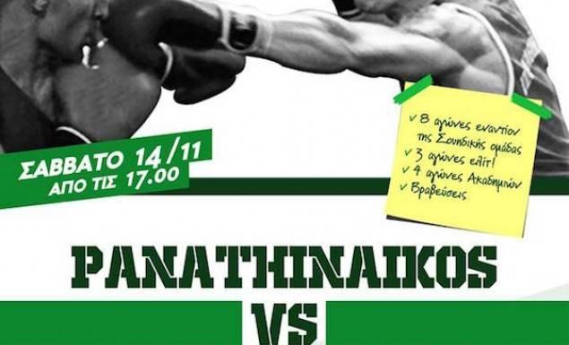Panathinaikos vs Hammarby, το Σάββατο (14/11) στην Λεωφόρο! | panathinaikos24.gr