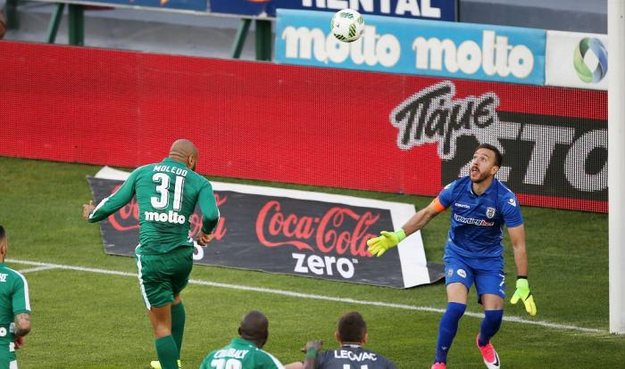 H κούπα είναι «πράσινη» Παναθηναϊκέ! | Panathinaikos24.gr