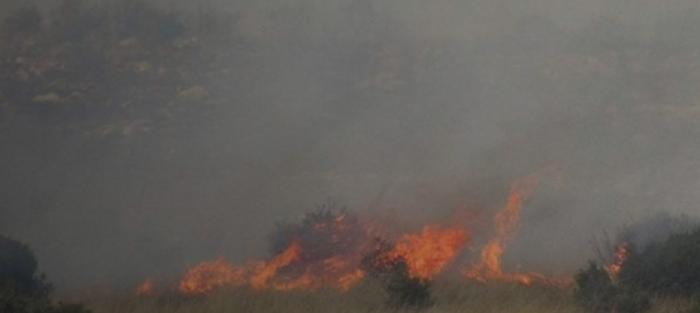 ΦΩΤΙΑ ΤΩΡΑ: Πυρκαγιά στο Άλσος Βεΐκου | panathinaikos24.gr