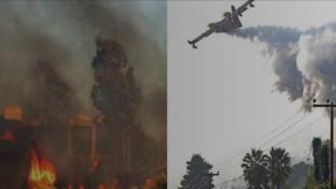 Κασσάνδρα: Μάχη με τις φλόγες δίνουν οι πυροσβεστικές δυνάμεις – Αγωνιούν οι κάτοικοι | Panathinaikos24.gr