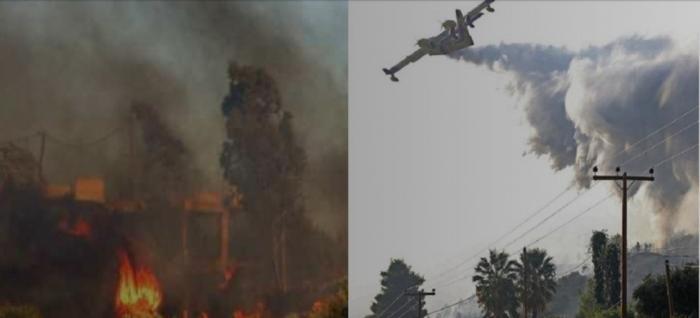 Τι συμβαίνει με τη φωτιά στην Ηλεία – Ενισχύονται οι δυνάμεις της Πυροσβεστικής (pics&vid) | panathinaikos24.gr