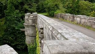 Το ανατριχιαστικό μυστήριο του Νταμπάρτον: Η «στοιχειωμένη» γέφυρα στη Σκωτία που κάνει τα σκυλιά να πηδούν στο κενό | Panathinaikos24.gr