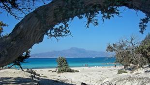 Η ελληνική… Χαβάη που θα σε κάνει να τρίβεις τα μάτια σου! | Panathinaikos24.gr