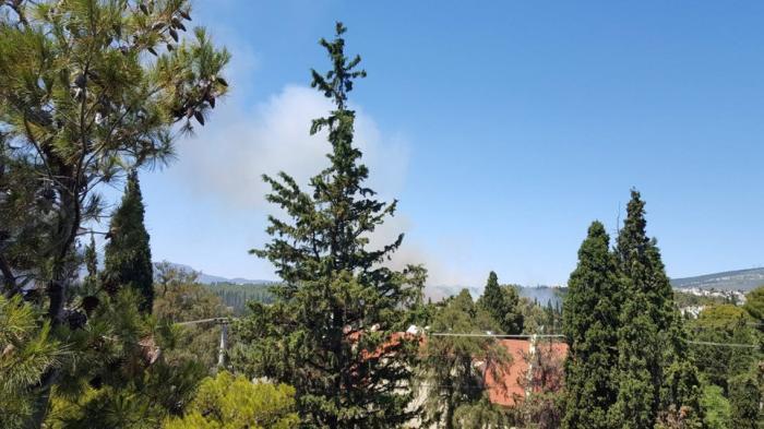 ΕΚΤΑΚΤΟ: Φωτιά στο άλσος Συγγρού – Σπεύδουν πυροσβεστικά αεροσκάφη | Panathinaikos24.gr