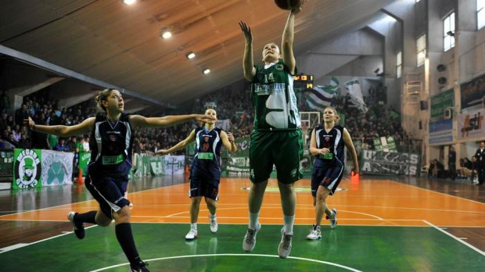 Τέσσερις μεταγραφές για το τριφύλλι! | panathinaikos24.gr