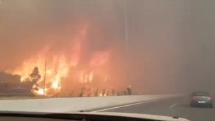 Βίντεο σοκ από την Κινέτα: Η φωτιά έφτασε στην Εθνική