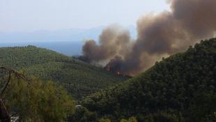 Έκτακτο: Μεγάλη φωτιά στη Σκόπελο!
