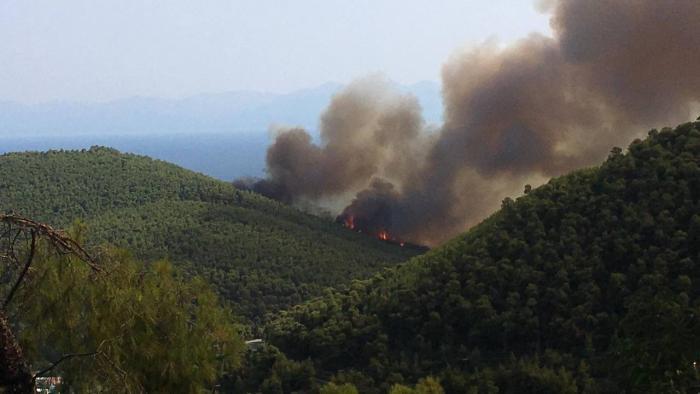 Έκτακτο: Μεγάλη φωτιά στη Σκόπελο! | panathinaikos24.gr