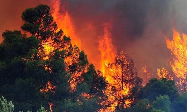 EKTAKTO: Μεγάλη φωτιά τώρα στην Κρήτη! | panathinaikos24.gr