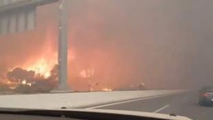 Βίντεο-σοκ από τη φωτιά στην Κινέτα: Οι φλόγες μια… ανάσα από τα αυτοκίνητα