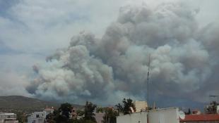 Έκτακτο: Μεγάλη φωτιά στην Κινέτα