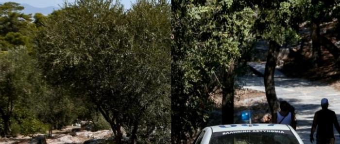 Επιστολή – γροθιά στον Τσίπρα από τη μάνα που έχασε το παιδί της στου Φιλοπάππου | panathinaikos24.gr