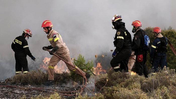 Έκτακτο: Πυρκαγιά στην Ηλεία | panathinaikos24.gr