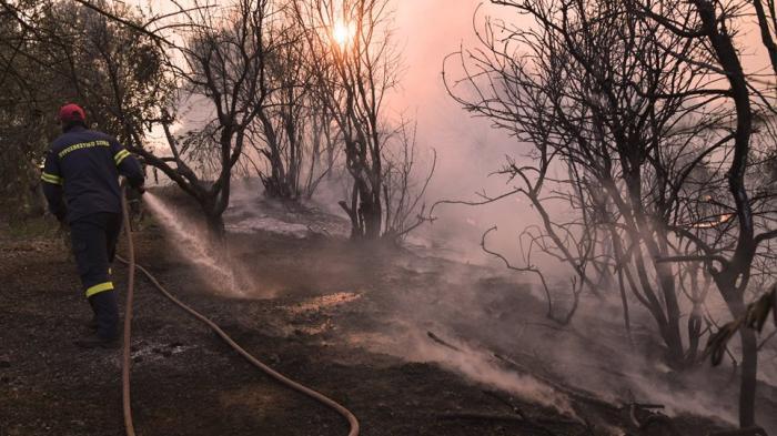 Μαίνεται η φωτιά στην Εύβοια – Ολονύχτια μάχη με τις φλόγες | panathinaikos24.gr