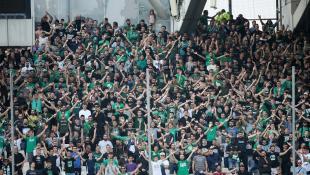 Η φωτογραφία του αγώνα: Τρέλα σε καταπράσινο φόντο! (pic)