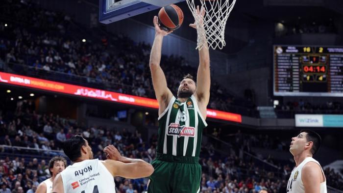 Βουγιούκας: «Έφερε νέο αέρα ο Πιτίνο»   panathinaikos24.gr
