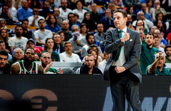Φοβερή ατάκα Πιτίνο: «Κάνω κράτηση για ξενοδοχείο στη Μαδρίτη» (pic) | panathinaikos24.gr