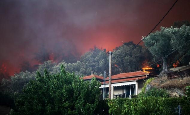 Ξαφνική αναζωπύρωση δίπλα σε σπίτια στο χωριό Μακρυμάλλη | panathinaikos24.gr