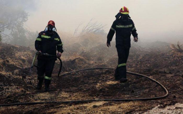Στουπιά, μπιτόνια και γκαζάκια στο σημείο που ξεκίνησε η φωτιά της Εύβοιας! | panathinaikos24.gr