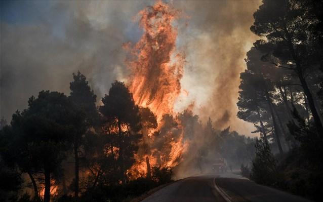Ιταλία και Κροατία στέλνουν πυροσβεστικά αεροσκάφη στην Εύβοια | panathinaikos24.gr