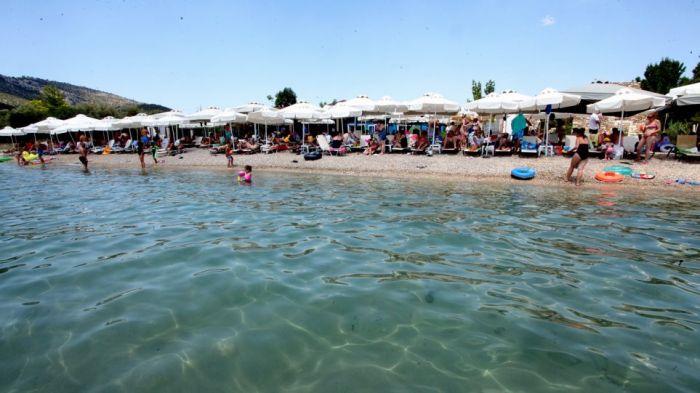 Αναψυκτήριο στο Αίγιο έδινε κουπόνια κόμματος αντί για αποδείξεις! | panathinaikos24.gr
