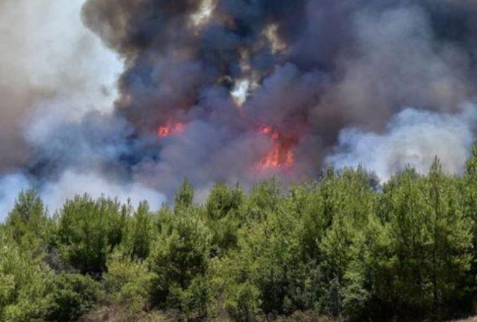 Μεγάλη φωτιά στη Νέα Μάκρη   panathinaikos24.gr