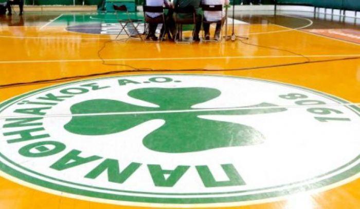 Ξεκινάει τον Φεβρουάριο η Volley League Γυναικών | panathinaikos24.gr